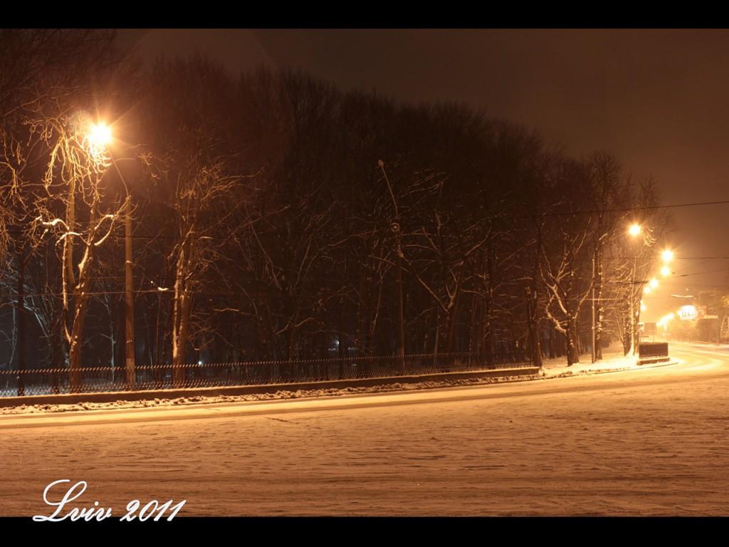 Зимний ночной Львов, Стрыйский парк, поворот вниз. 2011 январь.